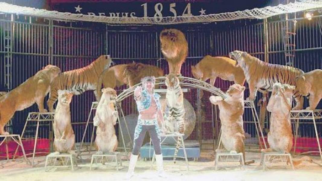 Cirque Pinder